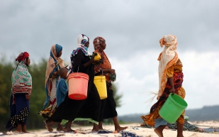 Collecting shellfish in Zanzibar.
